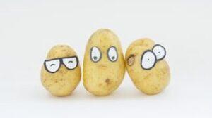 potato-hokkaido