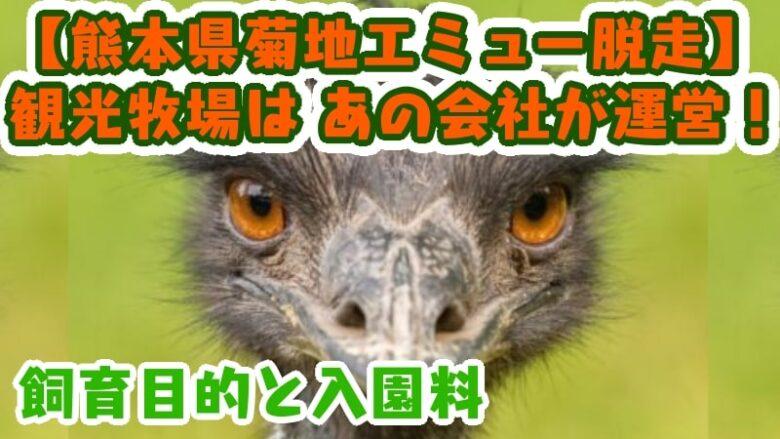 emu--escape-kumamotoken kikuchishi emu guest ranch-operating company-nihonshokuhin-menbei-tokyonogyou-university